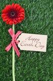 Ziemski dzień, Kwiecień 22, pojęcie wizerunek Zdjęcia Royalty Free