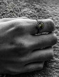 Ziemski pierścionek zdjęcie royalty free