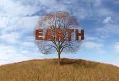 Ziemski tekst na drzewie ilustracji