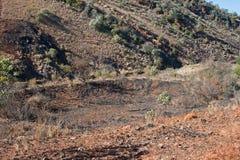 ZIEMSKI zazębienie W dolinie POD wzgórzem zdjęcia stock