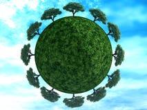 ziemskich drzew Zdjęcie Stock