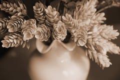 Zierpflanzekegel steigt ein rosa Vase ein, der als Postkartenmitte des 20. jahrhunderts stilisiert wird Lizenzfreie Stockfotos
