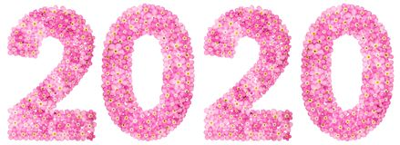 Ziffer 2020 von den rosa Vergissmeinnichtblumen, lokalisiert auf Weiß Stockfotos