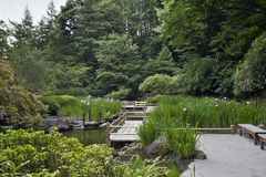 Zig Zag Bridge at Japanese Garden Stock Images