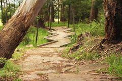 Zig Zag path Royalty Free Stock Images