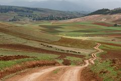 Zig zag road pass trough agriculture area of Inca people, Cusco, Peru royalty free stock photos