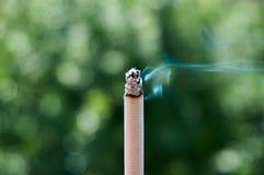 Zigarette mit Rauche und unscharfes bokeh als Hintergrund , die Aktion des Rauchens beendigen lizenzfreies stockfoto