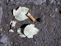 Zigarettenkippe lizenzfreie stockfotos