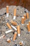 Zigarettenkippen Stockbilder