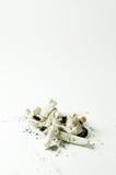 Zigarettenkippen Lizenzfreie Stockbilder