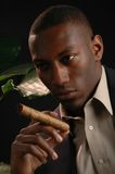 Zigarre lizenzfreies stockfoto