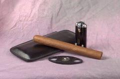 Zigarre und Hilfsmittel lizenzfreie stockfotos