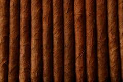 Zigarren Lizenzfreies Stockfoto