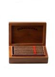 Zigarren in einem Kasten Lizenzfreie Stockbilder