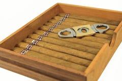 Zigarren sind in einem Kasten Stockbild