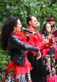 Zigeunerband het Presteren stock foto's