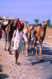 Zigeuners in Jaisalmer, India stock foto