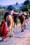 Zigeuners in Jaisalmer, India stock foto's