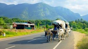 Zigeuners in Zuid-India Stock Foto's