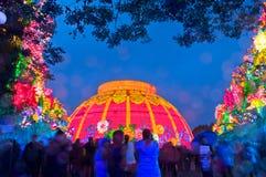 Zigong Lantern Festival. Zigong dinosaur Lantern Festival in China.During the Spring Festival in 2014 Stock Images
