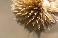 Zigzag astratto sul fiore secco dell'erbaccia nel fondo marrone Immagine Stock Libera da Diritti