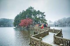Zigzag bridge in the lake Royalty Free Stock Photo