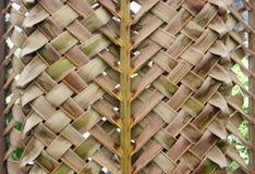 Zigzag interlocking of coconut leaves Stock Photos