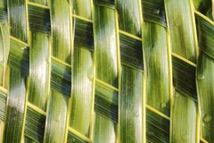 Zigzag interlocking of coconut leaves weave. For background Royalty Free Stock Images