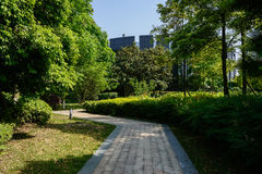 Zigzag shady path to modern building in sunny summer Royalty Free Stock Photography