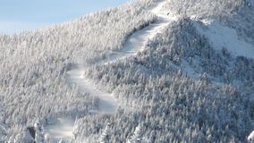 Zigzag ski trails Royalty Free Stock Image