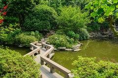 Zigzag stone pavement over verdant water Stock Photo