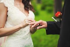 Zij draagt een ring Royalty-vrije Stock Foto's