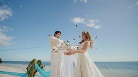 Zij laten de donkere vlinders uit de doos vliegen Een fabelachtig ogenblik van de huwelijksdag Gehuwd, de bruid en de bruidegom stock footage