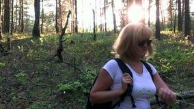 Zij reist door het hout Langzame Motie stock video