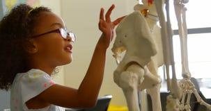 Zijaanzicht van Afrikaans Amerikaans schoolmeisje die menselijk skelet in klaslokaal leren op school 4k stock videobeelden