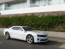 Zijaanzicht van een witte kleur Chevrolet Camaro SS Stock Foto's