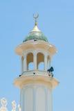 Zijaanzicht van moskee Royalty-vrije Stock Afbeelding