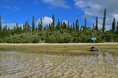 Zijaanzicht van ondiepe brakke rivierstroom met richtingsteken van & x22; Piscine Naturelle& x22; in Ile des Pins Royalty-vrije Stock Afbeeldingen