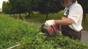 Zijaanzicht van tuinman in proces om struiken in park in orde te maken stock video