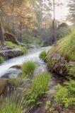 Zijderivier door zacht zonlicht wordt verlicht dat Royalty-vrije Stock Afbeeldingen