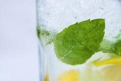 Zijhoekmening van Verse Mojito in Glas met de Ijsblokjes van Groene muntbladeren en Citroenplakken Royalty-vrije Stock Afbeeldingen