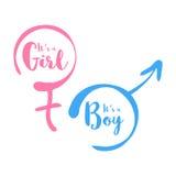 Zijn een jongen of een meisje - de uitnodigingsmalplaatje van de babydouche Kalligrafische tekst in het hand-drawn vrouwelijke en Stock Afbeeldingen
