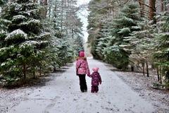 Zijn twee kleine zusters op een gang in het hout op de winter sneeuw stock afbeeldingen