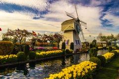 Zijn wij in Holland? Stock Foto's