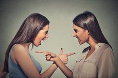 Zijprofielportret twee boze verstoorde vrouwen die elkaar beschuldigen Royalty-vrije Stock Foto