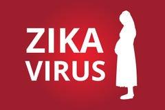 Zika病毒 免版税库存照片