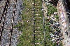 Zika :在里约,在铁路的垃圾倾向蚊子扩散 库存照片