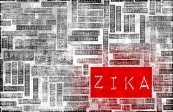 Zika Imagen de archivo libre de regalías