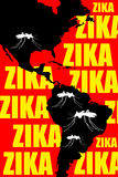 Zika Americas Royalty Free Stock Photo