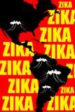 Zika Americas Royalty Free Stock Photo
